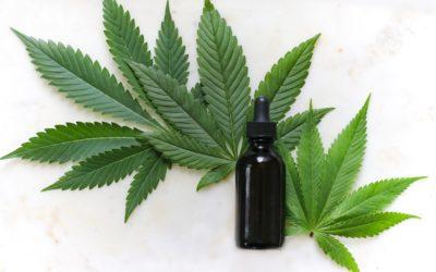 Maconha medicinal: o que muda na prática com a nova regulamentação?